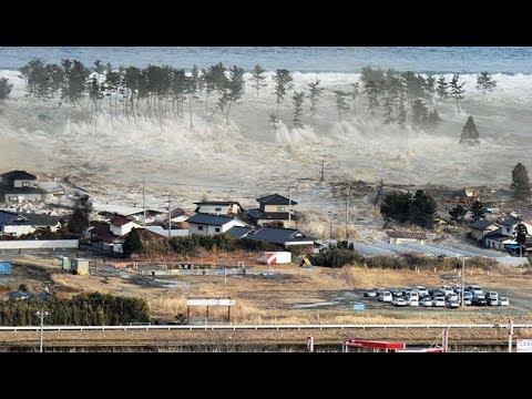 800 гаруй хүний амь насыг авч одсон Индонезийн цунами