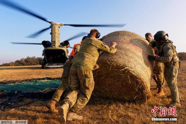 Австралийн арми имжид агаараас тэжээл цацлаа