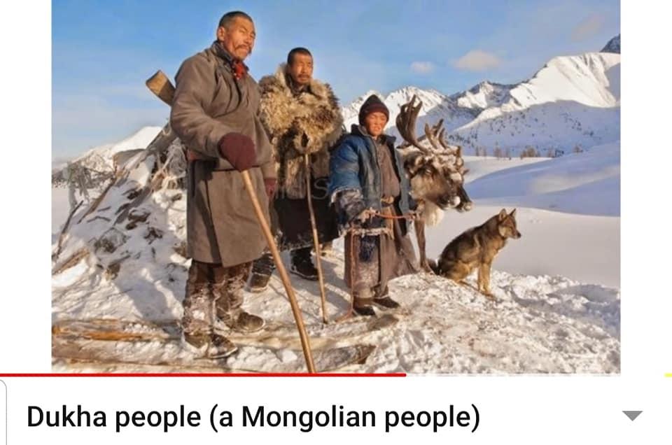 Монгол Чонон дүрст Нохой