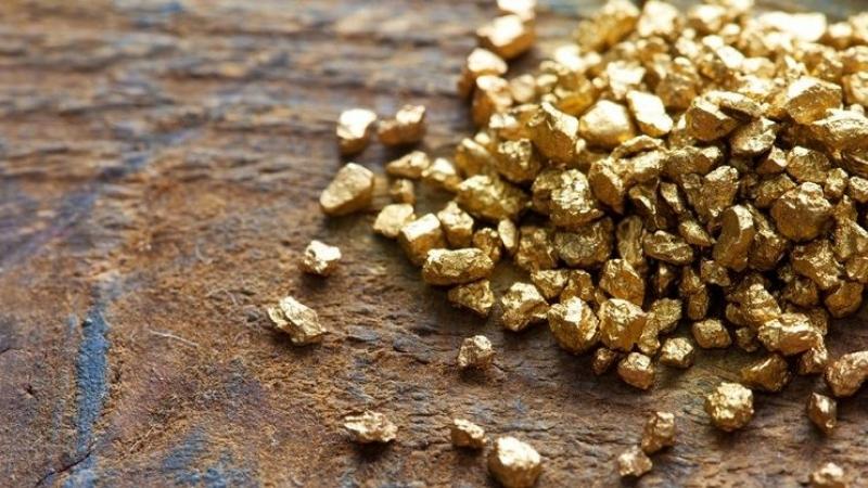Алтны хэмжээг 2-3 тонноор тогтвортой нэмэгдүүлж, 2020 онд 25 тоннд хүргэх боломжтой