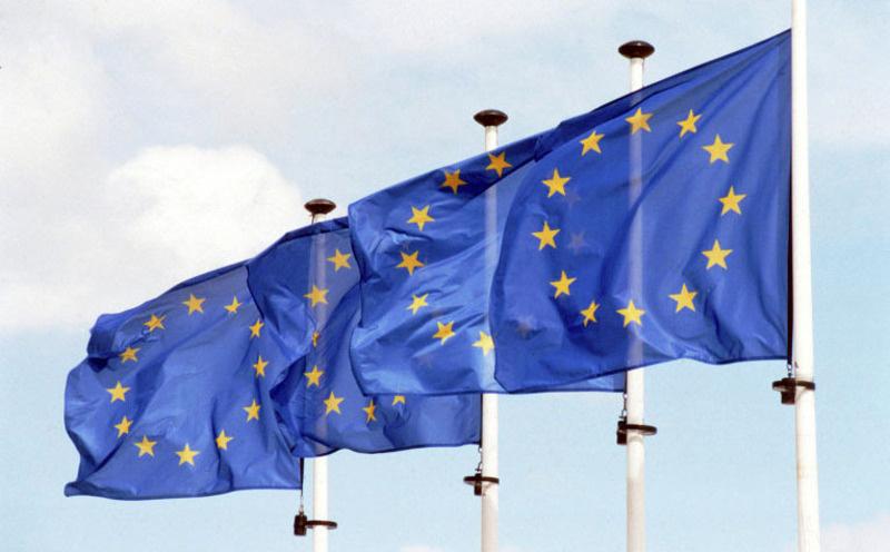 Европын холбоо гишүүн орнуудынхаа дотоод хэрэгт хэтэрхий их оролцож байна...