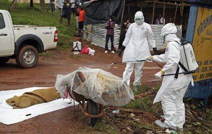 """Нигери улсыг """"Эбола""""-аас ангижирсан гэж үзлээ"""