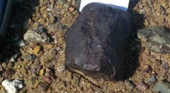 Уралын эрдэмтэд Монголоос солир олжээ