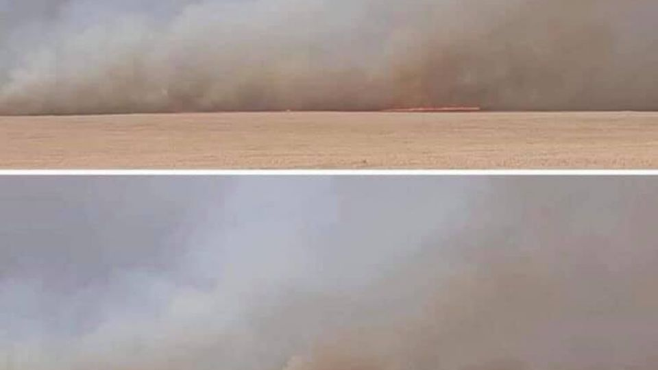 СЭРЭМЖЛҮҮЛЭГ: Сүхбаатарын Дарьгангад томоохон хээрийн түймэр гарчээ