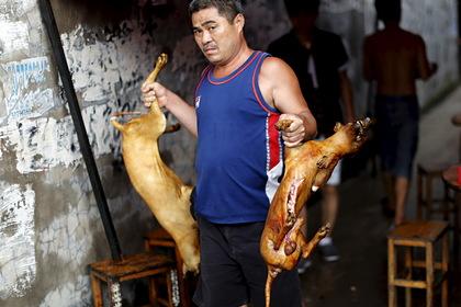 Хятад улс түүхэндээ анх удаа нохой, муурын мах идэхийг хориглолоо