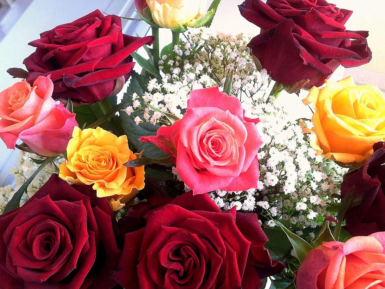 Сарнай цэцгийн өнгөний бэлэгдэл