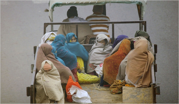 Энэтхэгт цочир хүйтэрч, 60 хүн амиа алдав