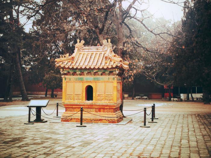 Хятадад эртний булш тоногчийг 23 жилийн дараа олж баривчилжээ