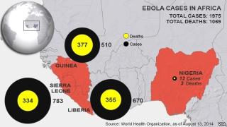 Гвиней улс эрүүл мэндийн онцгой байдал зарлалаа