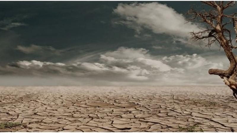 2050 он гэхэд таван тэрбум гаруй хүн усны хомсдолтой тулгарна