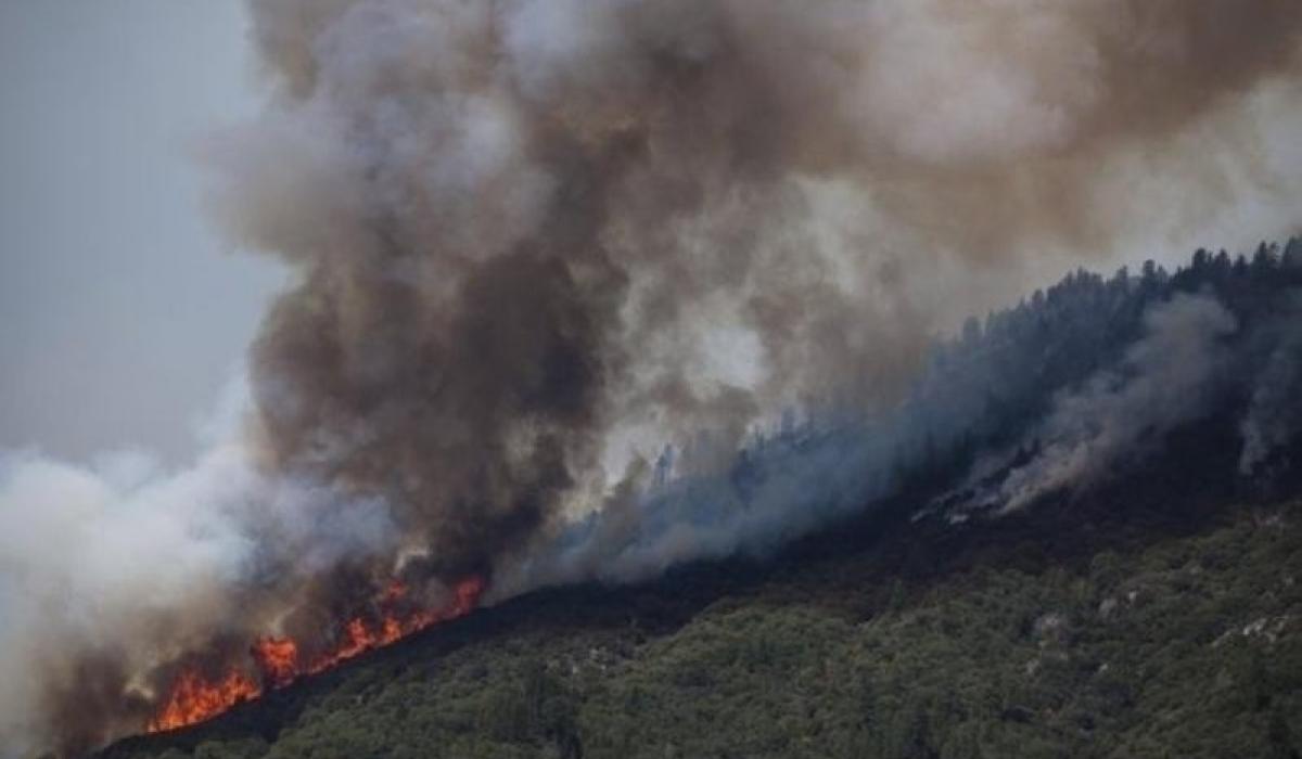 Булган аймагт ойн түймэр гарчээ