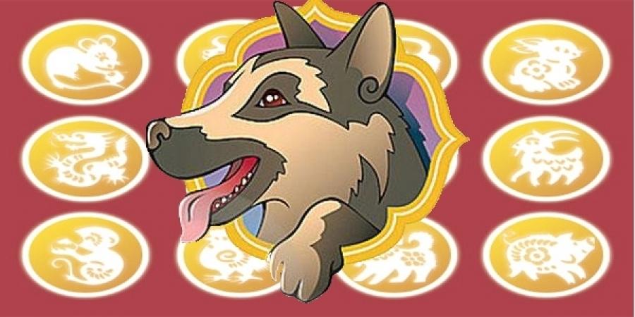 XVII жарны Шороон нохой жилд ОНЦГОЙ засалтай жилтнүүд