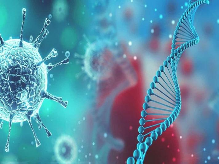 Шинэ төрлийн коронавирусний халдварыг