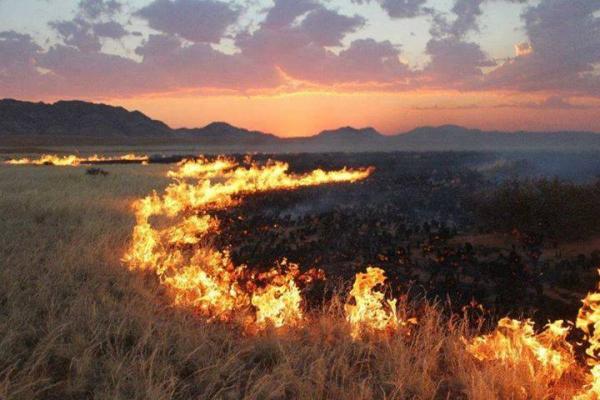 Ой хээрийн түймрээс урьдчилан сэргийлэх талаар зөвлөмж хүргүүллээ