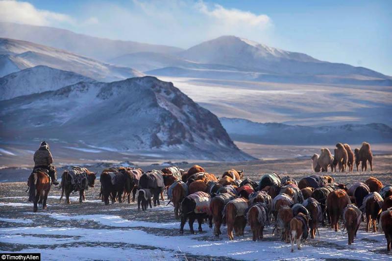 Монголчуудыг тольдсон Тимоти Аллэн /фото/