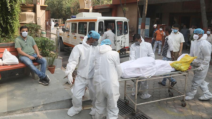 Энэтхэгт ховор төрлийн халдвар дэгджээ