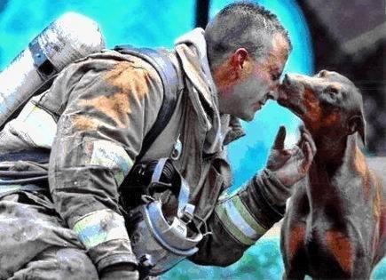 """""""Синнамоны үнсэлт"""" буюу талархлаа илэрхийлж буй нохойн гайхамшигт агшин"""