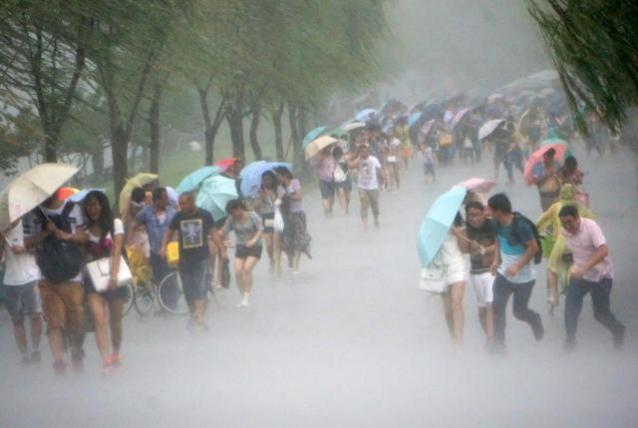 Тайваньд хар салхины улмаас 66 хүн бэртжээ