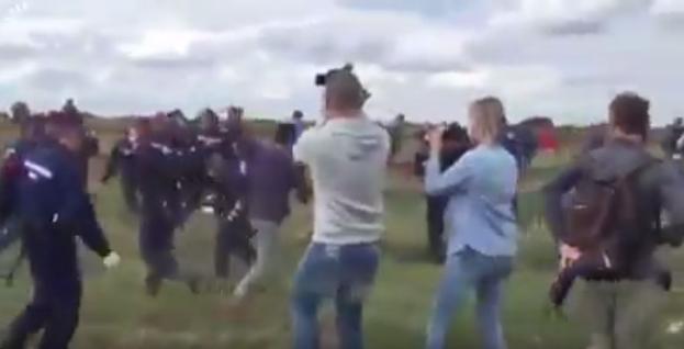 Дүрвэгсэдийн бичлэг хийж буй оператор унгар бүсгүй олны дургүйцлийг хүргэжээ