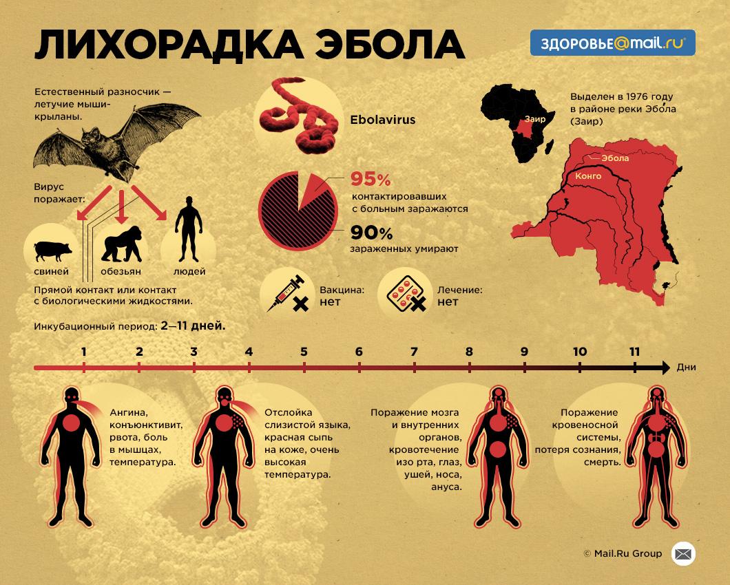 Эрүүл мэндийн 320 ажилтан эболагоор нас бараад байна