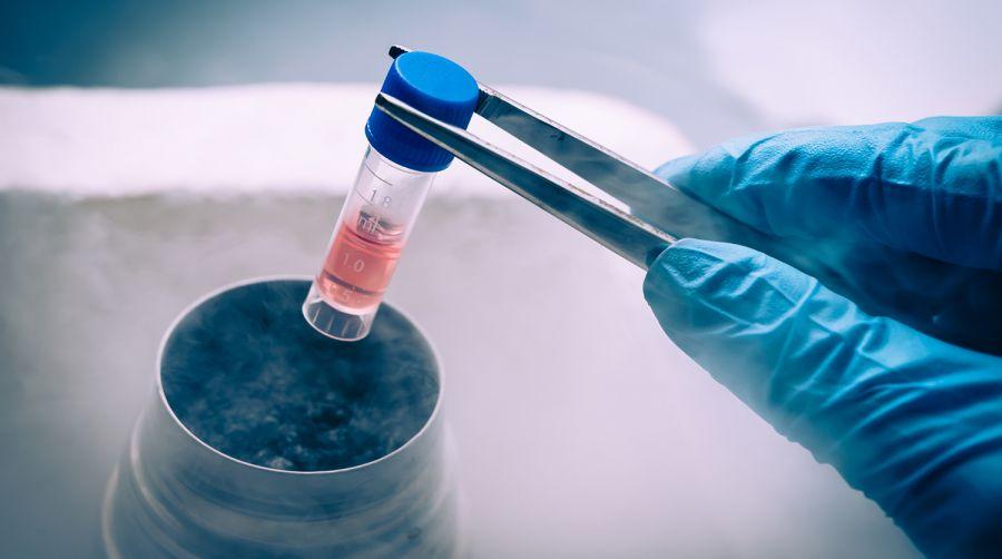 Японд дөнгөж төрсөн нярайн элгэнд анх удаа үүдэл эс шилжүүлэн суулгажээ