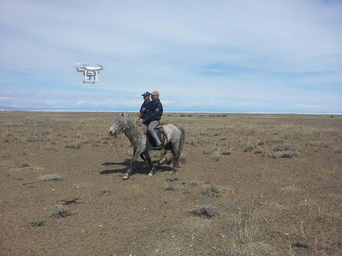 Увсад нисдэг камертай, морьт эргүүлүүд ажиллаж байна