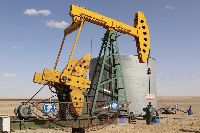 Говийн бүсэд газрын тос боловсруулах үйлдвэр байгуулна