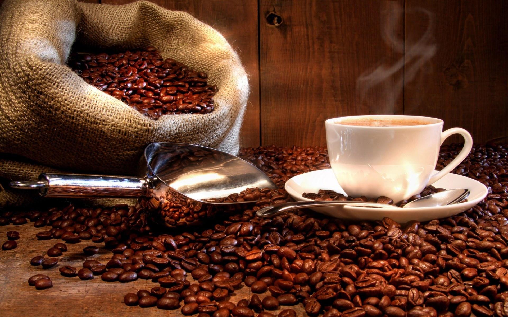 Кофеноос морфинээс илүү тайвшруулдаг бодис олжээ