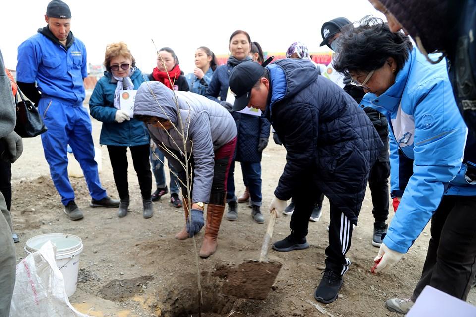 Бүх нийтээр мод тарих өдөрт 313 аж ахуйн нэгж нэгдлээ