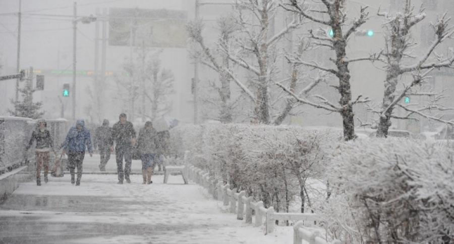 Монголд таван хошуу хэлбэртэй болон өнгөтэй цас орж байжээ
