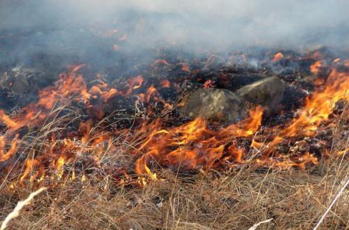 Эрдэнэ суманд гарсан ой хээрийн түймрийг унтраахаар ажиллаж байна