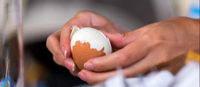 Өдөрт нэг өндөг идсэнээр зүрхний өвчнөөс сэргийлж чадна