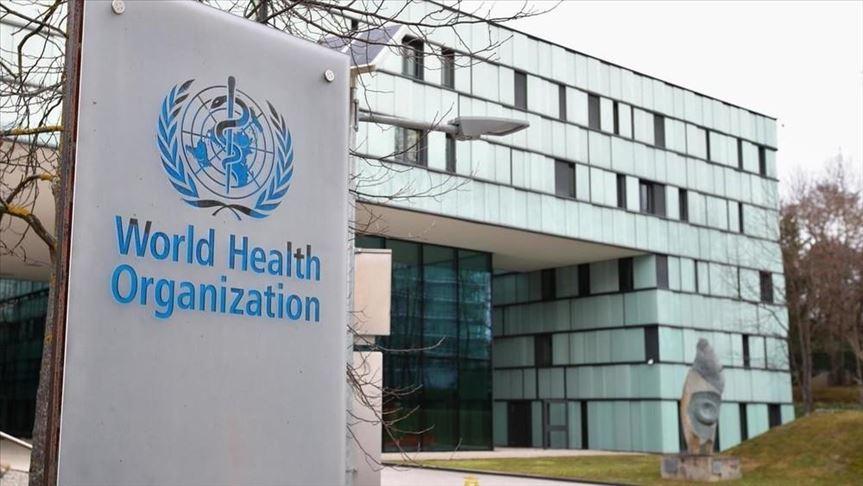 ДЭМБ вакцинжуулалтын гэрчилгээ нэвтрүүлэхийг дэмжлээ
