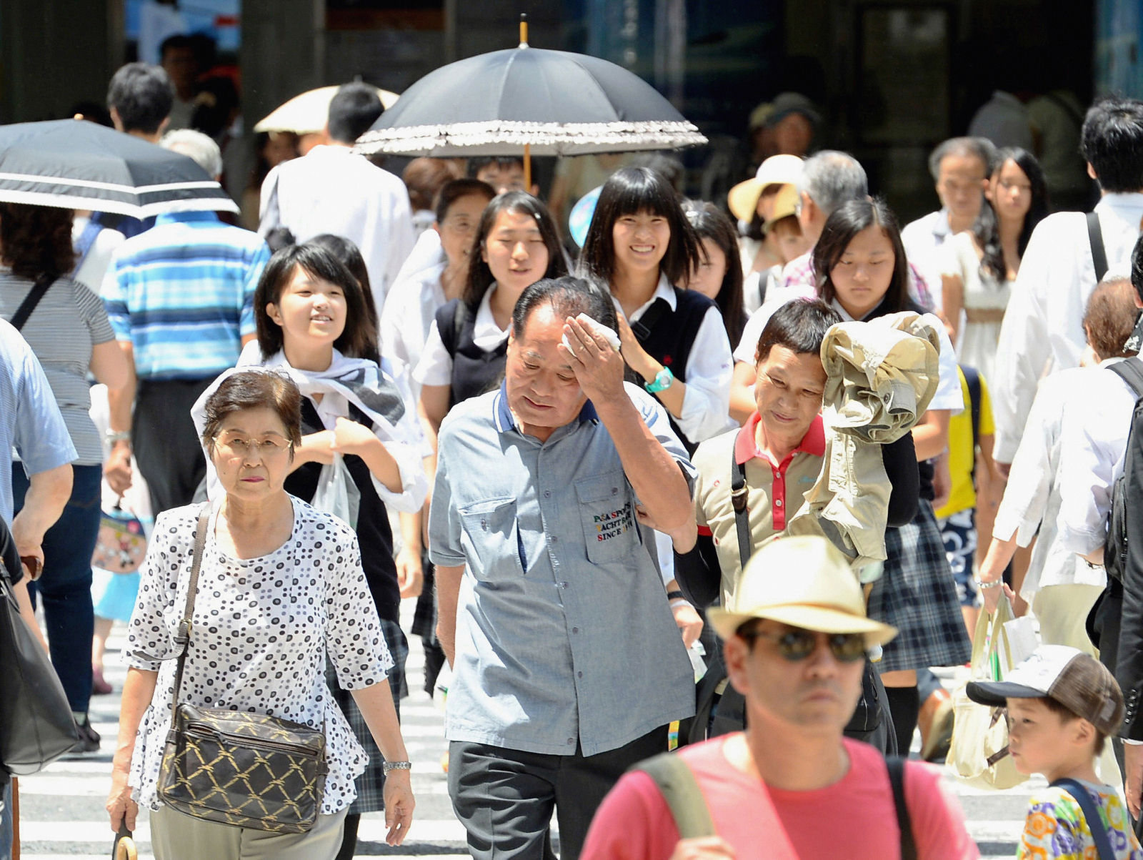 """Японыг """"Цагаан хэрэм"""" барихыг эсэргүүцэж байна"""